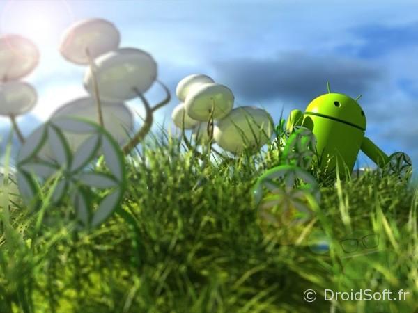 Droid Prairie, Le fond d'écran Android du jour : Droid Prairie
