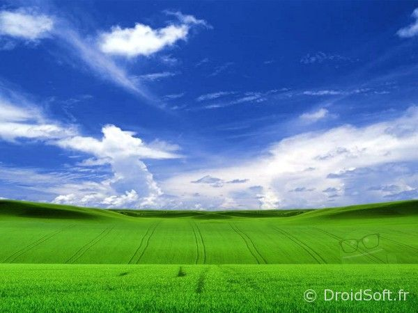 windows XP wallpaper android
