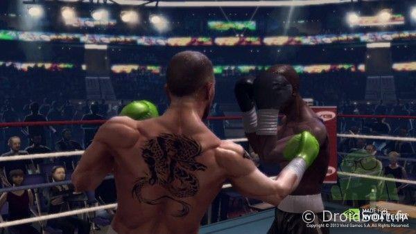 shield real boxing