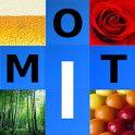 logo 4 Images 1 Mot - Français