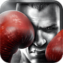 Real Boxing dispo sur Nexus 10, Galaxy Tab 2, Galaxy Note 10.1, Galaxy Note II