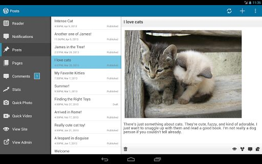 wordpress android 2.4