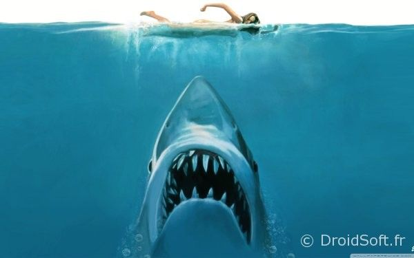 shark attack painting android wallpaper 2560x1600