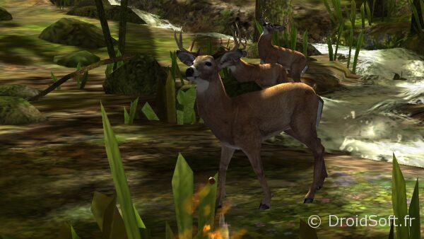 1284843-deer-hunter-2014