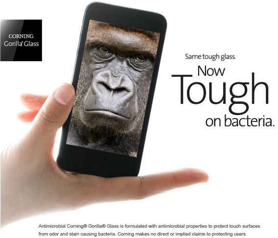 gorilla glass virus