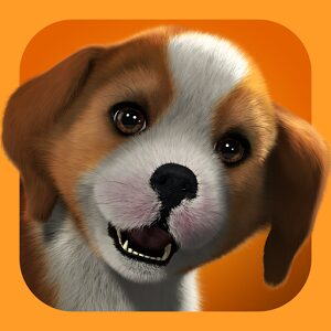logo  PS Vita Pets: Toilettage