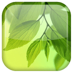 logo  Galaxy S4 Leaf Live Wallpaper