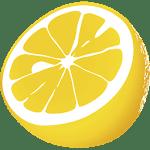 logo  JuiceSSH - SSH Client