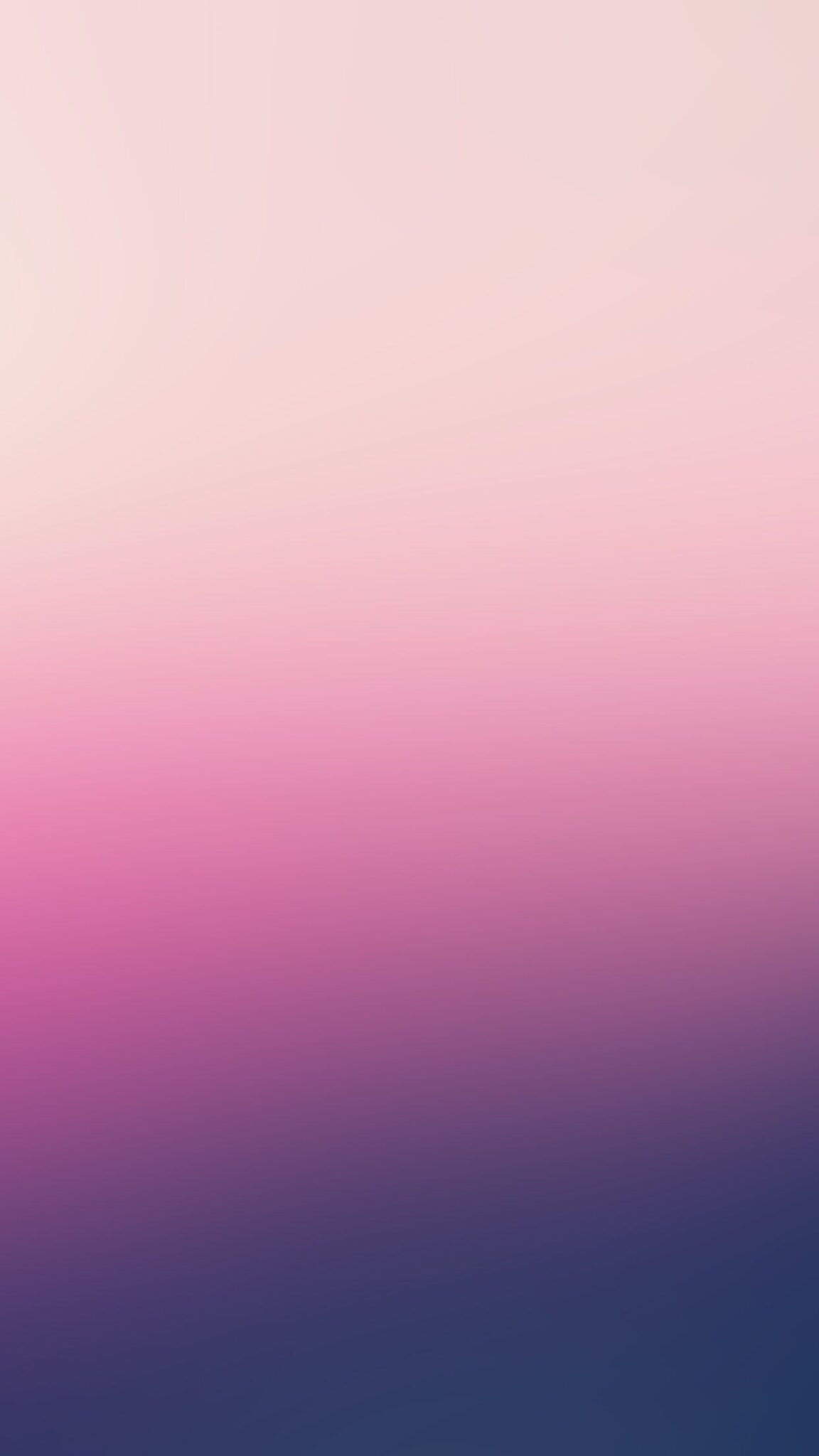 Rose Floute Fond D Ecran Android Hd Droidsoft