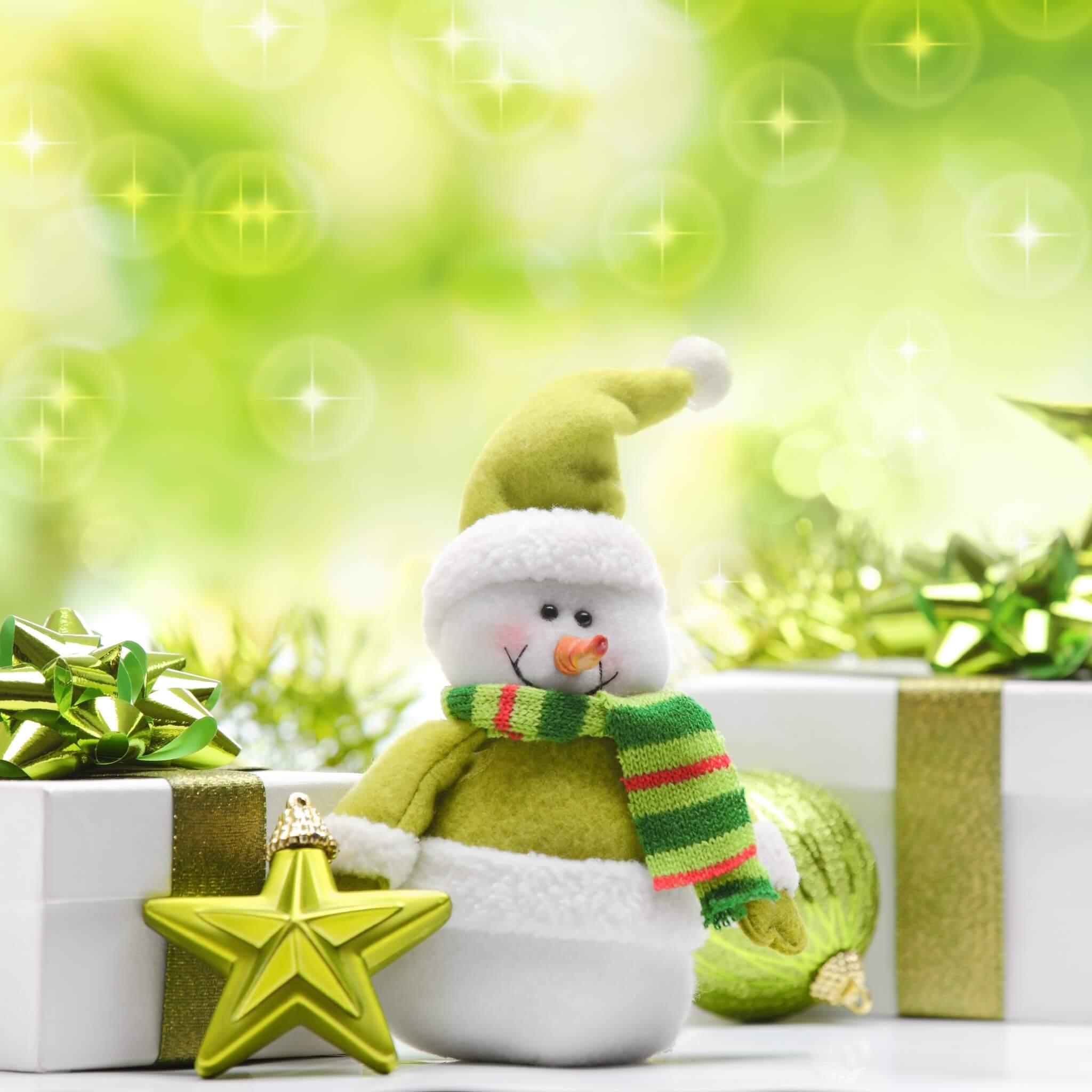 bonhomme de neige vert