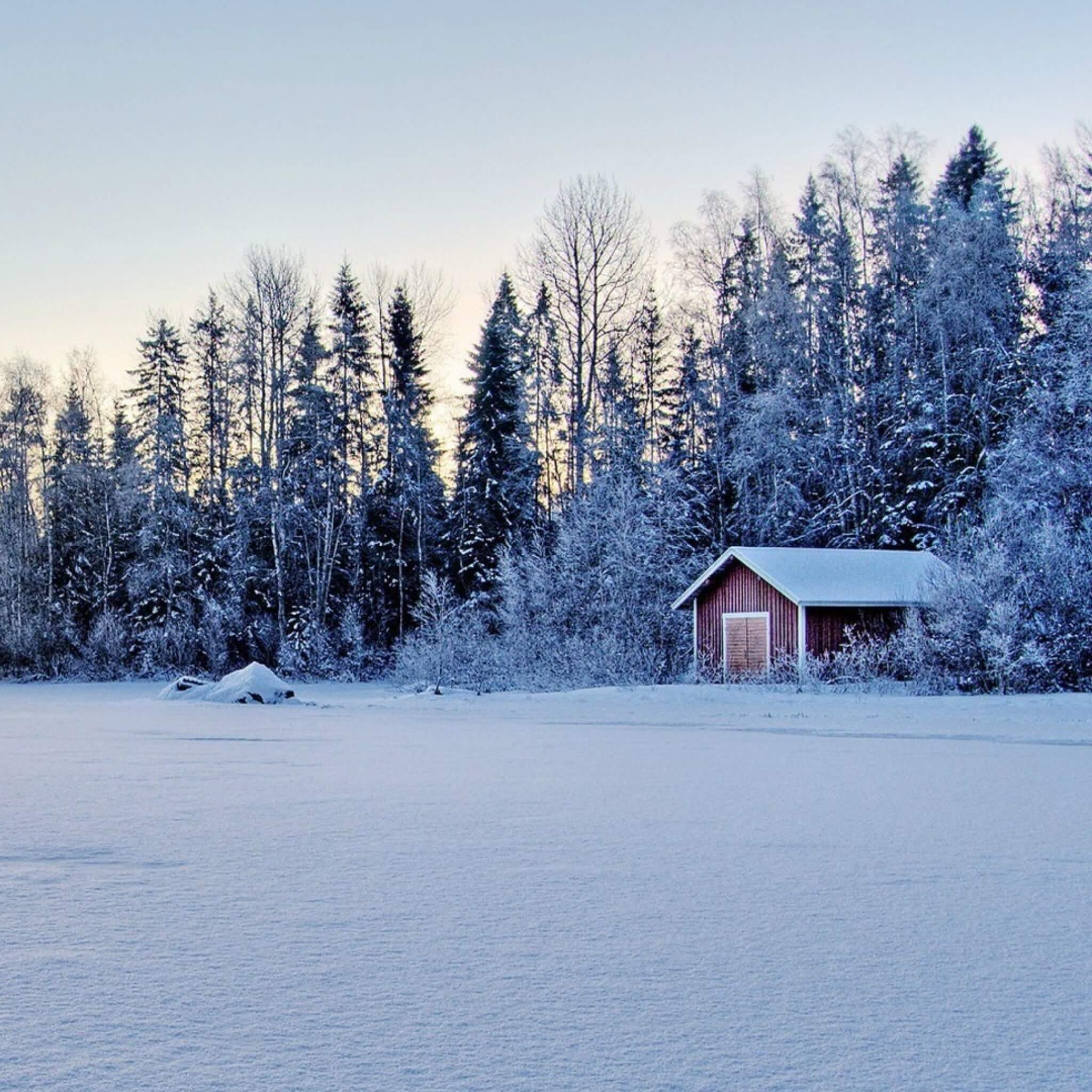 snow_field_trees_buildings_84824_2048x2048