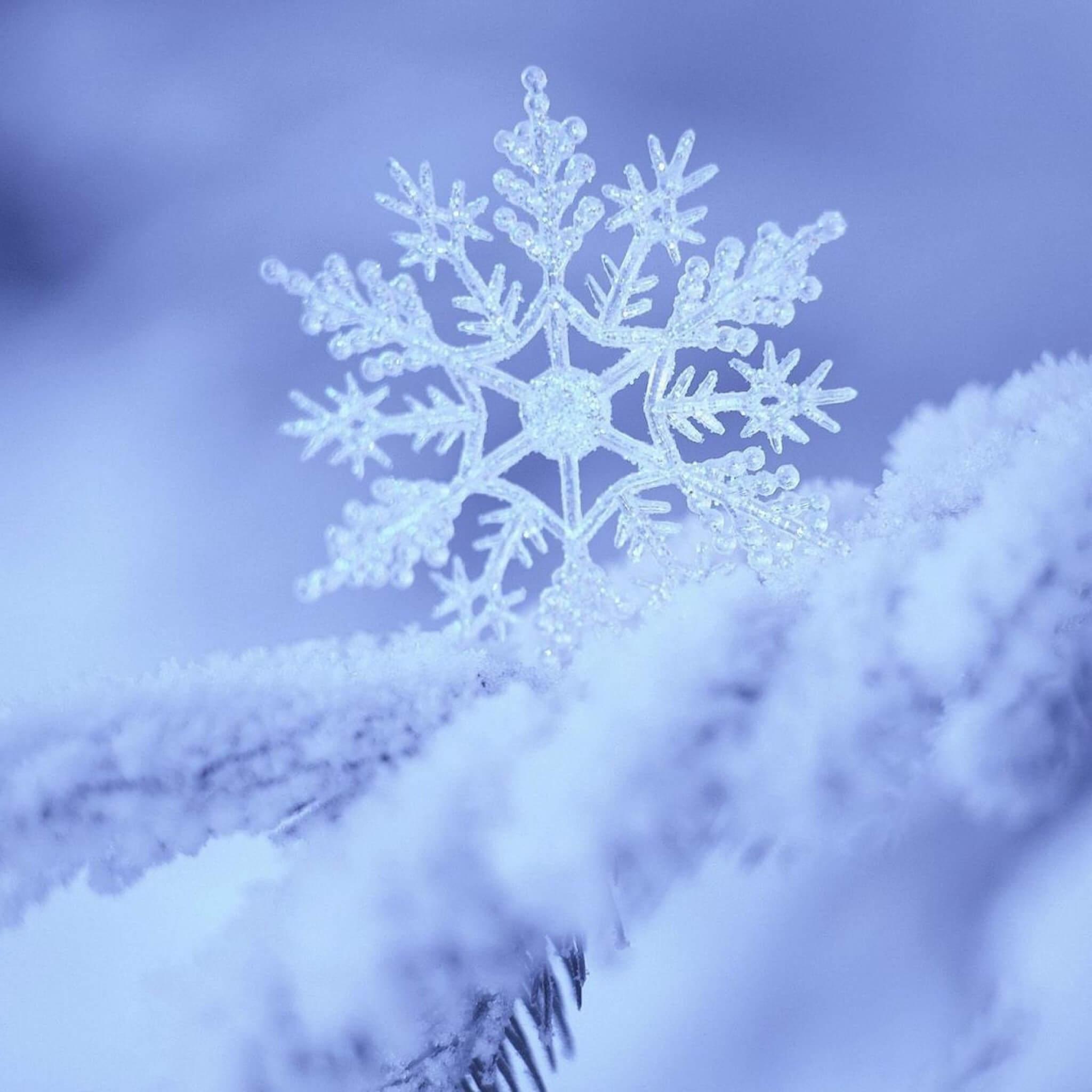 snow_snowflake_winter_form_pattern_49405_2048x2048