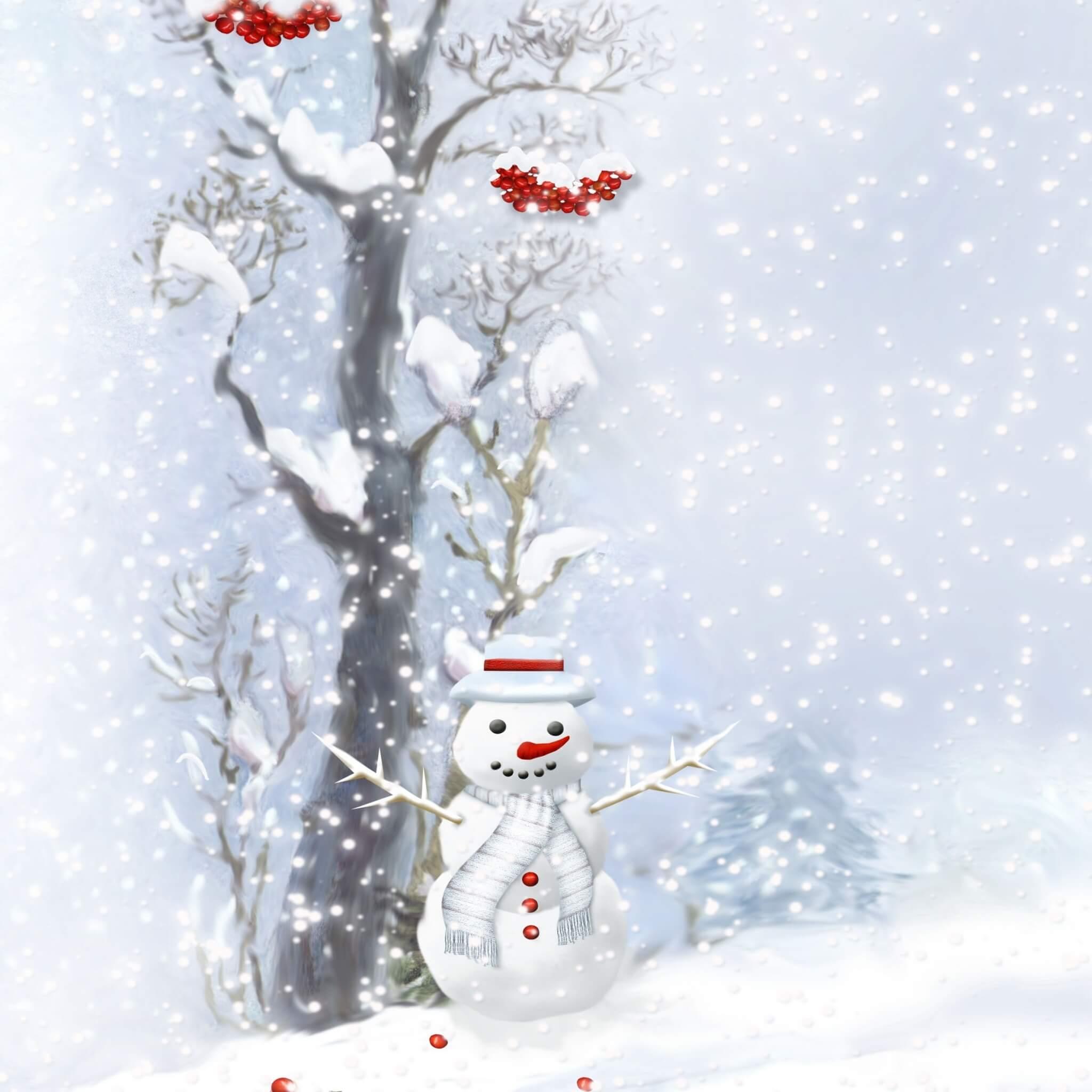 bonhomme de neige et sa branche