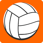 logo  2D volley