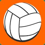 logo  2D volley